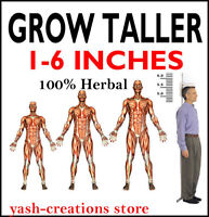Long Looks Herbal Increase Height Gain Taller Herbal Growth 240 Capsules(Unisex)