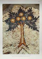 Caesarea - Atrium Pavement VIth Century -34x47cm vintage rare religious print