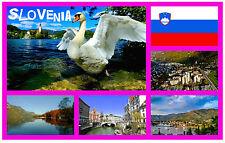 SLOVENIA - SOUVENIR NOVELTY FRIDGE MAGNET - BRAND NEW - GIFT