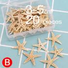 50/100pcs Natural Starfish Seashell Beach Craft Wedding Home Decor