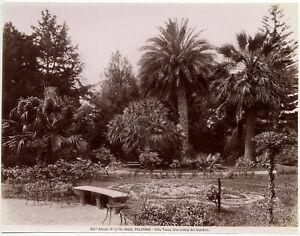 Palermo Villa Tasca Foto originale all'albumina Alinari 1890c L877