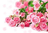 Impresión en Marco - Ramo De Rosas Rosadas (Imagen Margarita Orquídea Planta