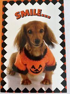 Leanin' Tree Halloween Card - S M I L E & have a happy Halloween Dog
