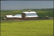 230025 Farm And Rapeseed Fields Alberta A4 Photo Print
