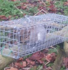 TWO x HUMANE RAT, SQUIRREL TRAP NO TOXINS, SAFE WITH PETS & CHILDREN