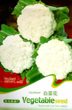 20  White Cauliflower Seed rich in nutrients Easy to grow Free Shipping