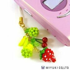MiyukI No. 25 TROPICAL FRUITS Fruit Charm and Strap Beading Kit