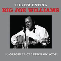 BIG JOE WILLIAMS *50 Greatest Hits* Import 2-CD BOX SET *Orig Songs *NEW, SEALED