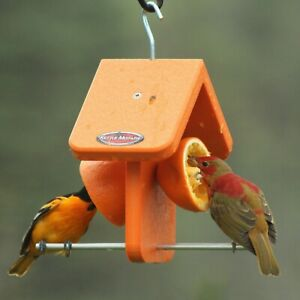Kettle Moraine Recycled Plastic Single Oriole Orange Fruit Bird Feeder #8334