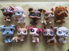 Lot 10 figurines Petshop / Lot 4