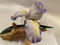 Vintage 1982 Andrea By Sadek Purple Mere Iris Porcelain Figurine #7032