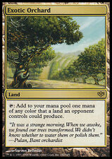 Orchard Exotic - Exotic Orchard MTG MAGIC With Eng