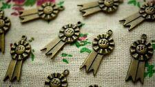 Roseta 10 encantos Bronce Estilo Vintage Joyería suministros C1042