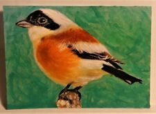 New ListingThe Little Finch Bird Aceo Original Anmal Painting by Leslie Popp