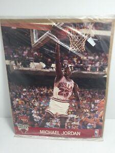 MICHEAL JORDAN #23 CHICAGO BULLS 8X10 NBA ACTION HOOPS PRINT 1990
