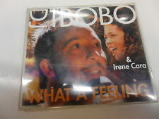 CD DJ Bobo & Irene Cara – What A Feeling