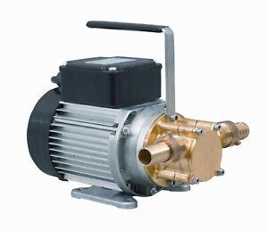 Heizölpumpe Calpeda WP 15 230V Dieselpumpe Werkstattpumpe Wasserpumpe