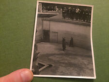Social History Vintage Photograph Two Bears In A Zoo Men Watching USA 1950's