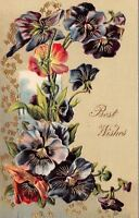 Colorful Purple Pink Blue Pansy Spray~Gold Leaf Embossed~1909 Postcard