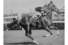 PHAR LAP 1930 Melbourne Cup Winner J Pike Jockey modern Digital Photo Postcard