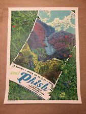 Phish Dicks New Custom Art Poster Print Wall Decor