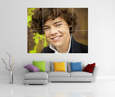 HARRY STYLES ONE DIRECTION GIGANTE WALL ART PICTURE PRINT POSTER G97