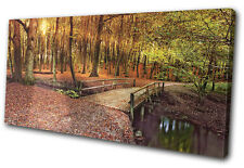 Landscapes Forest Bridge SINGLE DOEK WALL ART foto afdrukken