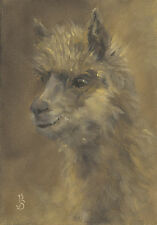 """On Watch, Alert Alpaca"" Debra Sepos original oil 5"" x 7"" fleece farm portrait"