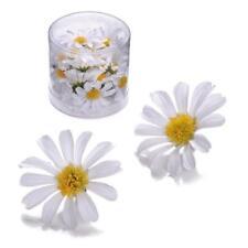 Knorr Prandell Flower Heads - 25pcs White Daisies #864