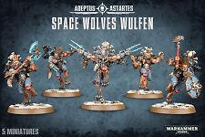 Space Wolves Wulfen Space Marines Wolf Warhammer 40k NEW