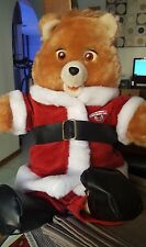 Christmas Teddy Ruxpin Outfit 1985 Worlds of Wonder Talking Bear with Box
