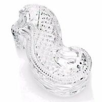 "Waterford Crystal Seahorse 8"" Covered Trinket Jewelry Desk Box Large #40027965"