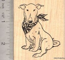 English Bull Terrier Dog Rubber Stamp K12602 WM