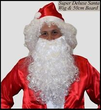 Santa Claus WHITE Curly WIG and BEARD SET Christmas Potter Wizard Costume Party
