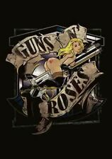 2CD Guns N' Roses  – Greatest Hits Collection Music 2CD