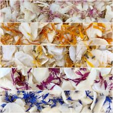 Biodegradable PINK BLUE WEDDING CONFETTI Dried IVORY FLUTTER FALL Real Petals