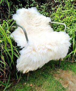 XXXL A+++ Genuine Fluffy Pelt British Cream Sheepskin Rug - 110cm by 75cm (2983)