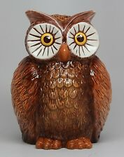 Ceramic Money Saving Bank Owl Piggy Bank Collectible Bird Collection.Big Eyes