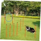 Dog Agility Equipments, Obstacle Courses Agility Training Starter Kit for