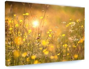 ABSTRACT YELLOW SPRING FLOWER MEADOW CANVAS PICTURE PRINT WALL ART #5341