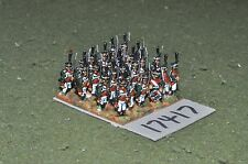 15mm napoleonic / russian - grenadiers 24 figs - inf (17417)