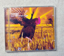"CD AUDIO MUSIQUE / CATATONIA ""DEAD FROM THE WAIST DOWN"" 3 TRACKS  1999 CD SINGLE"