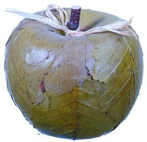 Leaf Apple Natural Green Country Hand Made Fruit Craft Floral Decor Filler 515f