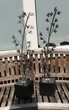 More details for a pair of tall silver style metal leaf shaped sculptures