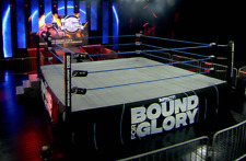 IMPACT Wrestling event-used Bound For Glory ring skirt - 17x3.5 feet w/ Hologram
