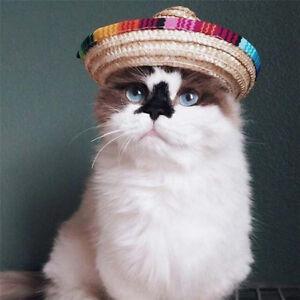 Multicolor Hat Dogs Cap Portable Adjustable Apparel Woven Sombrero Pet Straw Hat