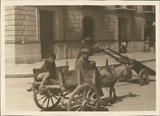 Sicile, Palerme, Enfants dans une charrette, ca.1925, vintage silver print vinta