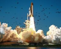 New 11x14 Photo: Launch of Ill-Fated Space Shuttle Challenger, Mission STS-51-L