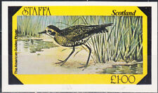 W STAFFA 051 NON POSTAL BIRDS AMERICAN GOLDEN PLAYER SOUVENIR SHEET