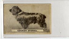 (Jb3047-100)  SWEETACRE,FAVOURITE DOGS,COCKER SPANIEL,1932#39